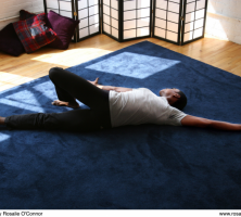 Fall Feldenkrais® Classes Vancouver